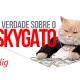 Neste vídeo vou te explicar as dores de cabeça de contratar a famosa internet SkyGato!